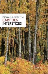 IntersticesW