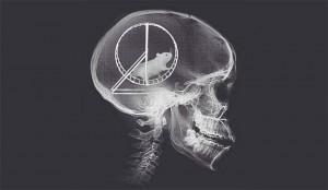 souris-dans-cerveauWW